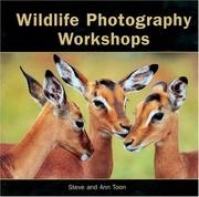 Cover of: Wildlife photography workshops by Ann Toon