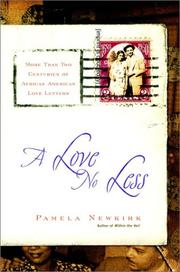 Cover of: A Love No Less by Pamela Newkirk