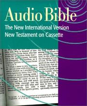 Cover of: Audio Bible | Stephen Johnston