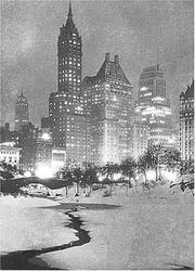 Cover of: Central Park, Winter (Holiday Cards) | Galison/Mudpuppy