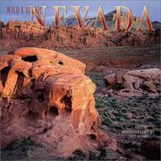 Cover of: Wild & Scenic Nevada 2002 Wall Calendar by Jeff Gnass