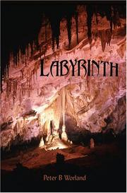 Cover of: Labyrinth by Peter B. Worland