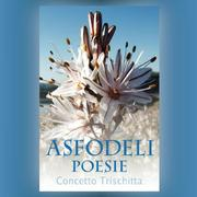 Cover of: ASFODELI by Concetto Trischitta