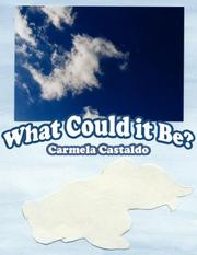 Cover of: What Could it Be? by Carmela Castaldo