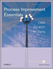 Cover of: Process Improvement Essentials by James Persse