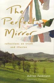 Cover of: The Perfect Mirror | Adrian Feldmann