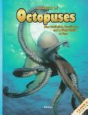 Cover of: A Tangle of Octopuses by Vicki Leon