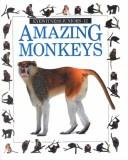 Cover of: Amazing Monkeys (Eyewitness Juniors) | Scott Steedman