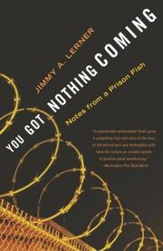 Cover of: You Got Nothing Coming | Jimmy A. Lerner