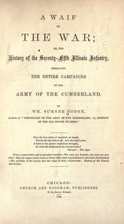 Cover of: A waif of the war by William Sumner Dodge