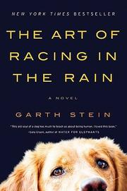 Cover of: The art of racing in the rain | Garth Stein