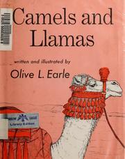 Camels and llamas