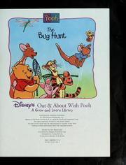 Cover of: The Bug Hunt (Disney's Out & About With Pooh, Vol. 17) | Ann Braybrooks