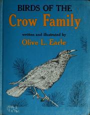 Birds of the crow family