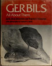 Cover of: Gerbils, all about them | Alvin Silverstein
