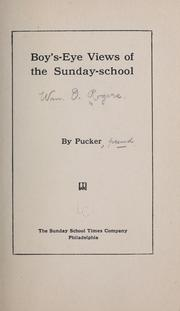 Cover of: Boy's-eye views of the Sunday-school | William O. Rogers