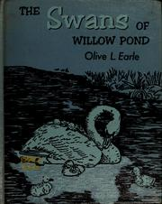 The swans of Willow Pond