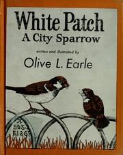 White Patch, a city sparrow