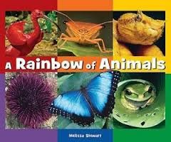 A rainbow of animals by Melissa Stewart