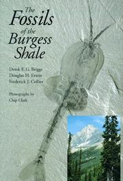 Cover of: Fossils of the Burgess Shale | BRIGGS D