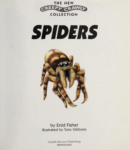 Spiders by Enid Fisher