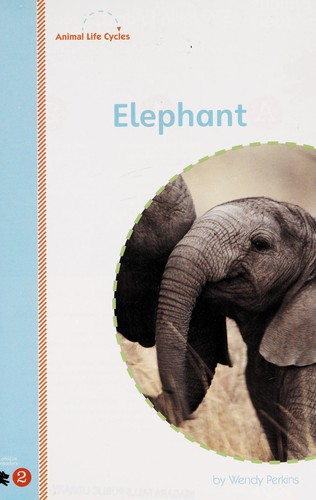 Elephant by Wendy Perkins