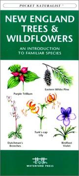 Cover of: New England Trees & Wildflowers by James Kavanagh